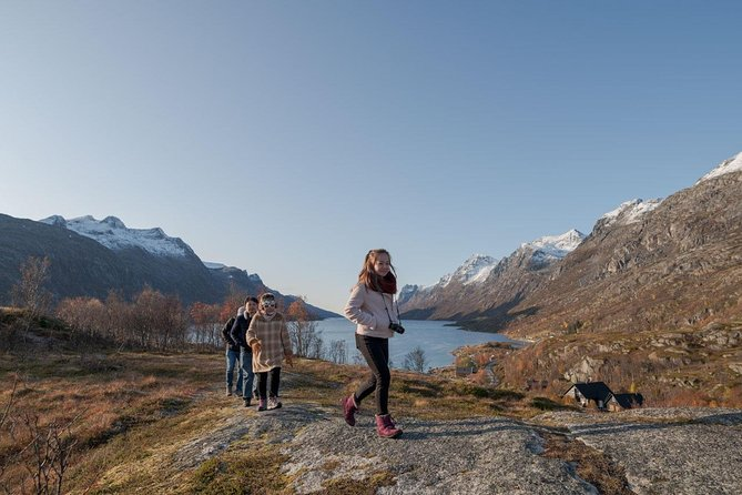 Arctic Roadtrip: Sommarøy with scenic picnic Ⓥ | Small group 8 max | Sightseeing