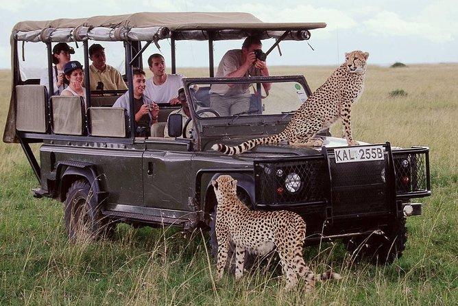 4 Days Epic Safari