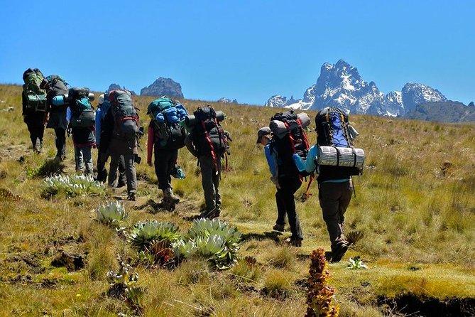 6 Days Mt Kenya Climbing (Sirimon – Naromoru Route)