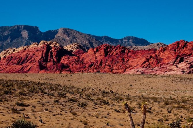 Valley of Fire and Red Rock Canyon Day Tour from Las Vegas