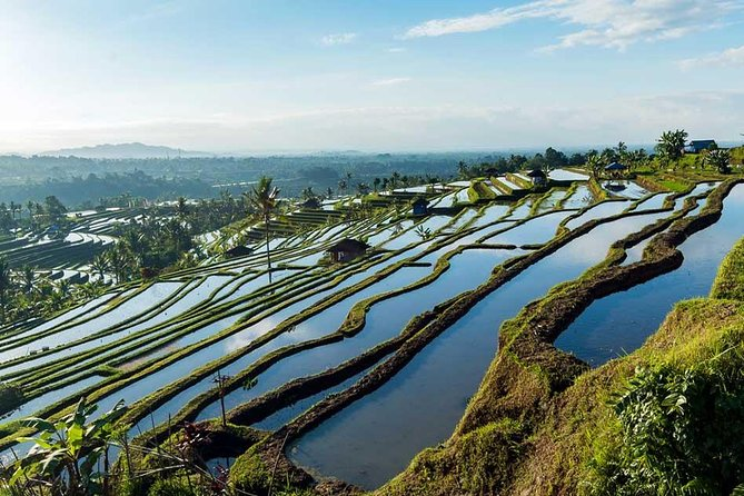 Bali Full Day Car Charter - Jatiluwih and Tanah Lot Temple Tour