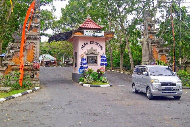 Private Bali Half Day Car Charter - Tanah Lot Sunset Tour