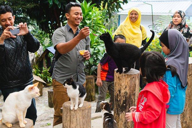 10 hours chartered-car with a tour guide (Kota Kinabalu Area)