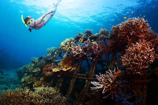 Amazing Nusa Penida Snorkeling Experience