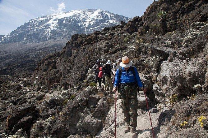 7 Days Rongai Route Kilimanjaro Trekking with Burigi Chato Safaris