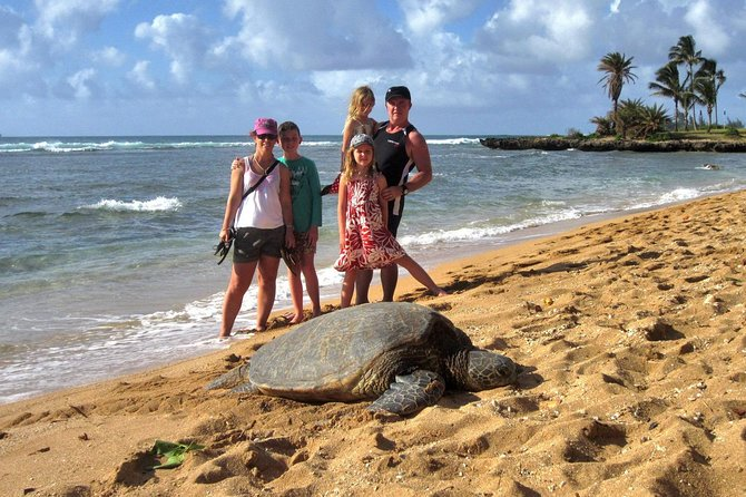 Custom Island Tour - for 1 to 3 people - up to 8 hours - Private tour of Oahu