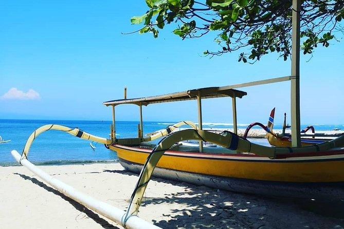 Blue Lagoon Snorkeling - Jungle Swing - Ubud - All Included + FREE Wi-Fi