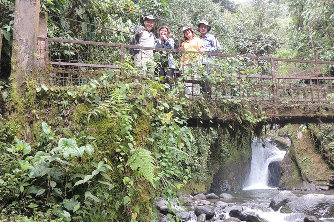 Mindo Cloud Forest Private Day Tour