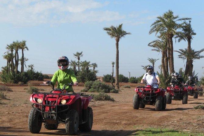 Marrakech Plameraie Half-Day Quad Bike Experience