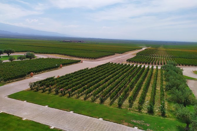 Ultimate Uco Valley Wine Tour