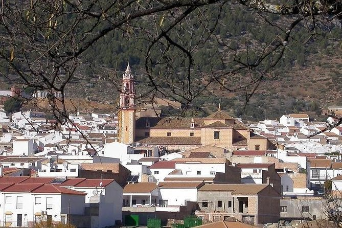 Spend a day in the White Villages from Cadiz