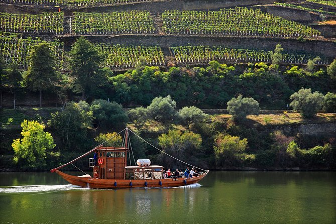 Douro Valley Tour: Wine Tasting, River Cruise and Lunch From Porto with Pickup