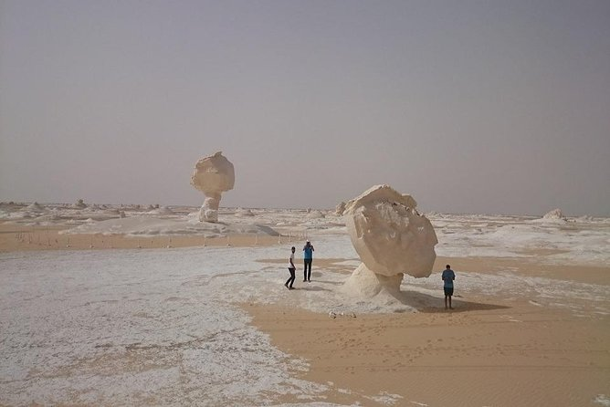 Cheap Trip : day trip to Fayoum from cairo