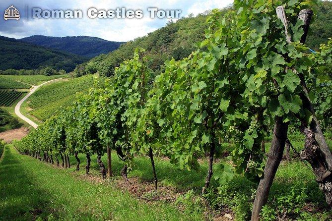 Roman Castles Tour by classic vintage car, motorbikes and vespa