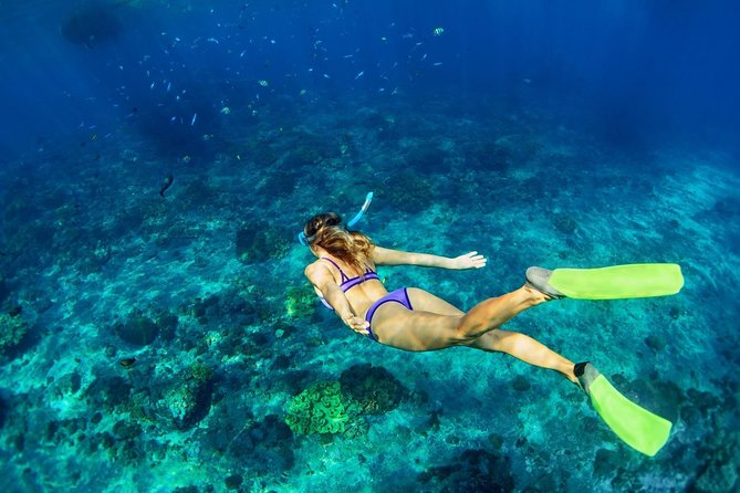 Shared Swim and Snorkel Tour in Rhodes