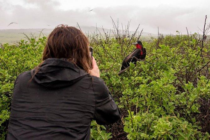 5 days in Galapagos | Bonita Tourist Superior Cruise | Northern Itinerary 2021