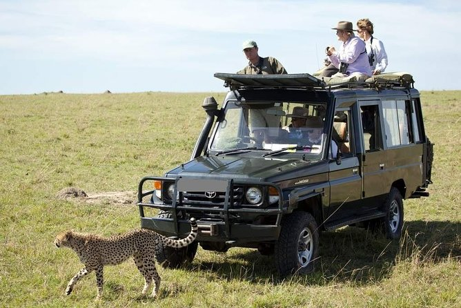 3-Day Private Jeep Safari Tour in Maasai Mara from Nairobi