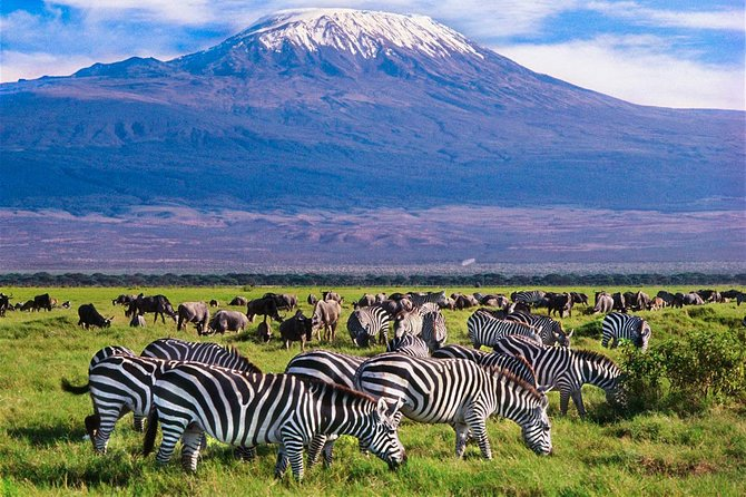 3 Days (2 nights); Tsavo East & Amboseli Safari:
