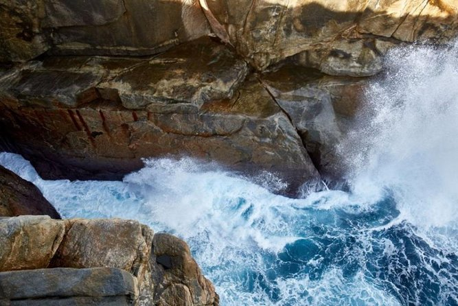 Discover Torndirrup National Park: The Gap & Natural Wonders Tour