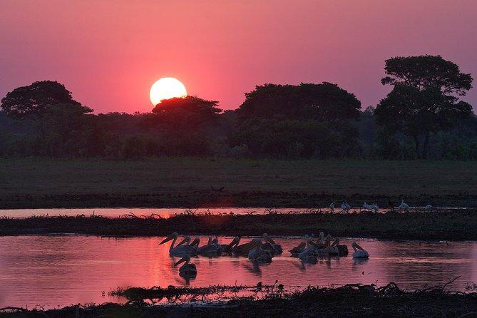 African sun-set view