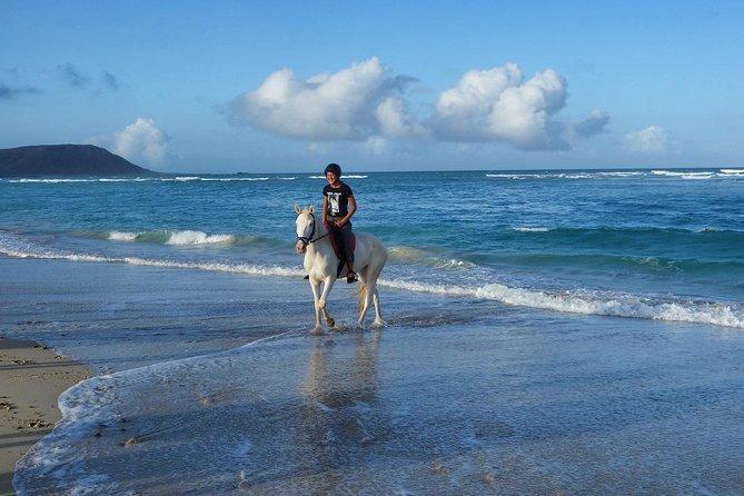 Horseback riding and photoshooting expirience