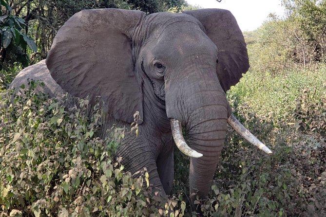 13 Days East Africa Adventure