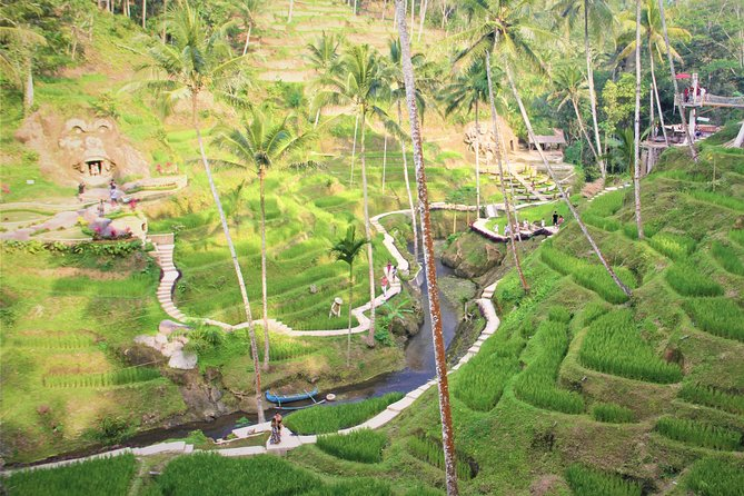 The Greatest Ubud Tour with Guide and Free WI-FI