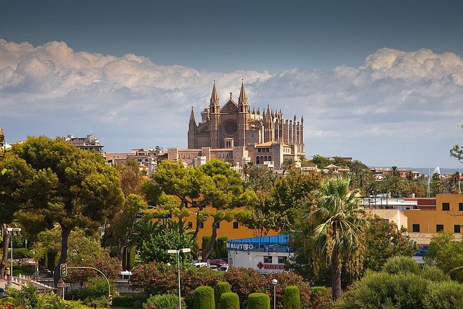 Private 4-hour Walking Tour of Palma de Mallorca with official tour guide