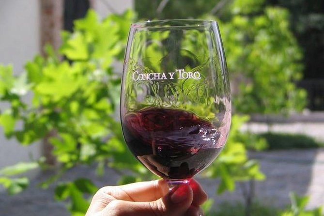 Concha y Toro Traditional Tour