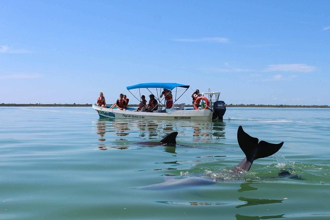BE AMAZED by SIAN KAAN Biosphere Reserve. Includes drinks, buffet and transport.