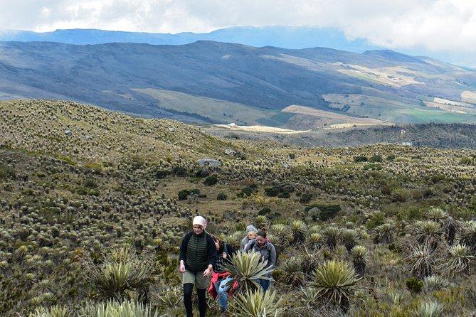 Sumapaz Páramo Hike Tour