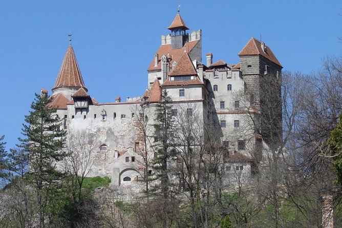 "DayTour to Bran ""Dracula's"" Castle + Peles Castle + Wine tasting at Azuga cellar"