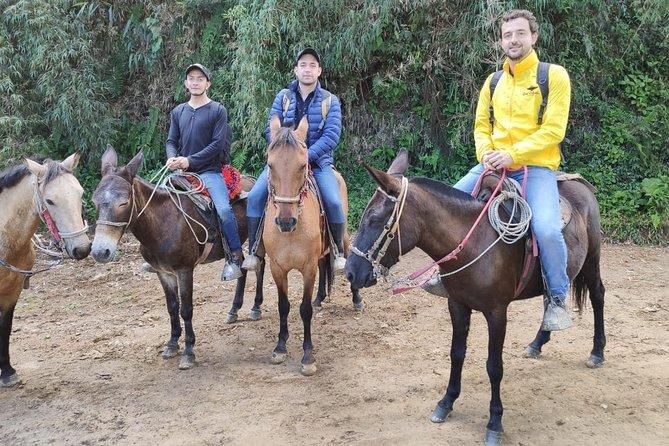 Cavalgada de Guadalupe a Monserrate