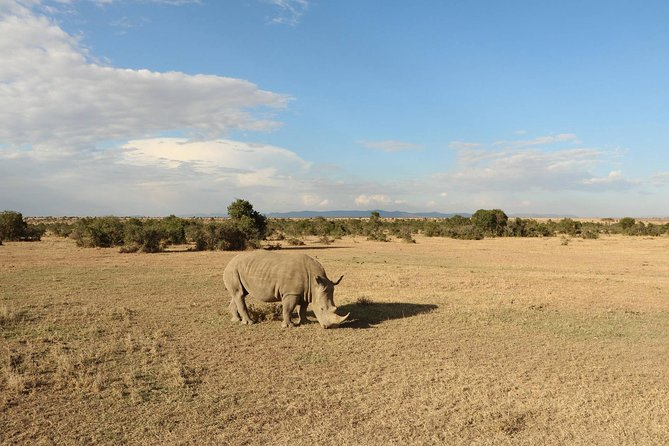 03 Days Tarangire, Lake Manyara and Ngorongoro Area