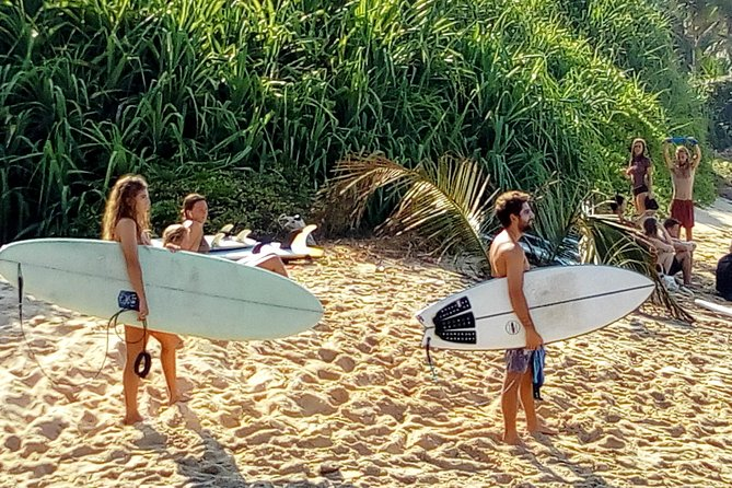 Surf Spots Tour Include Wildlife and Sightseeing