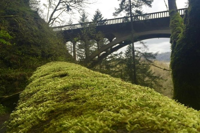 From Portland: Columbia River Gorge 3-Hour Guided Tour