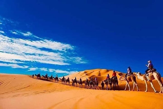 Private Premium Transfert From / To Marrakech To / From Merzouga