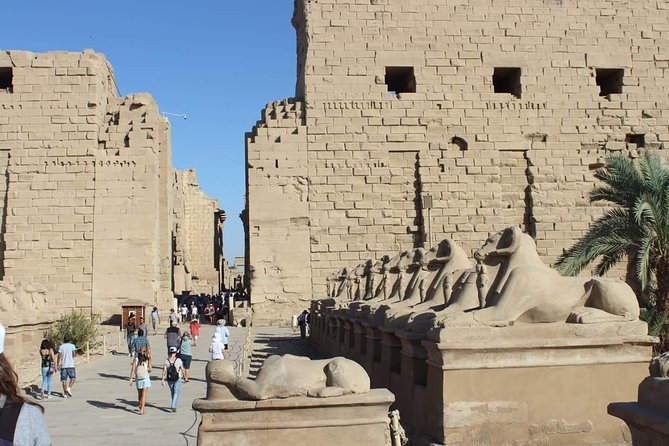 Luxor Private Guided Day Tour From Cairo By Plane including Lunch