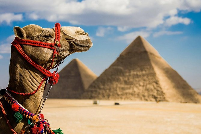 Private Tour: Giza Pramids, Sphinx, Egyptian Museum& Bazaars From Cairo