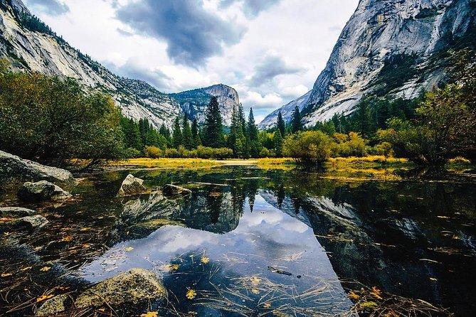 San Francisco Yosemite National Park & Giant Sequoias 1 Day Tour