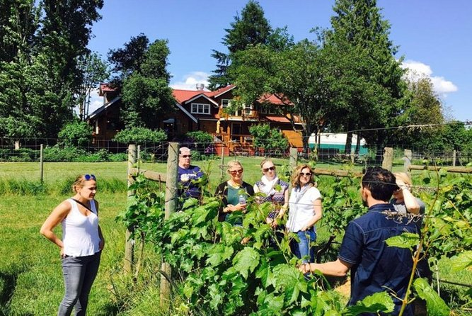 From Victoria to Cowichan Wine 6-Hour Guided Tour