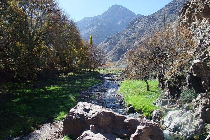 Atlas Mountains - Camel Trek - Waterfalls - Berber Villages Trek Day Trip
