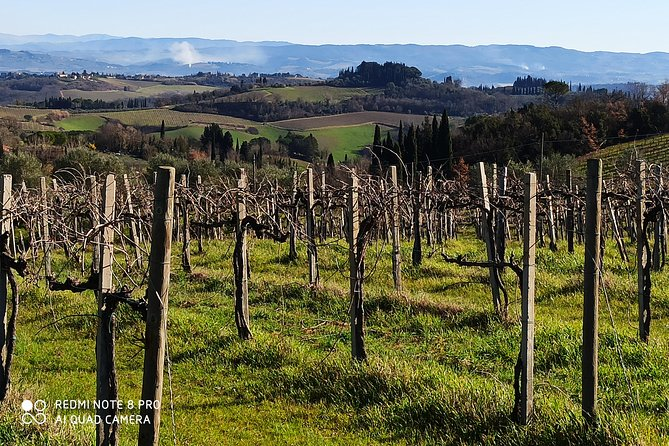 EXCLUSIVE Wine Tour in Chianti and Siena with Lunch & Wine Tasting included