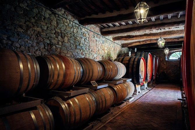 Wine Tasting Brunello di Montalcino