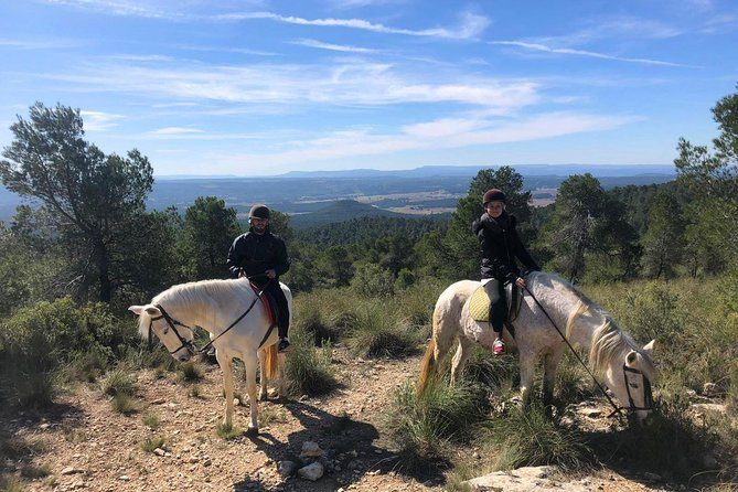 Horseback riding and wine tour