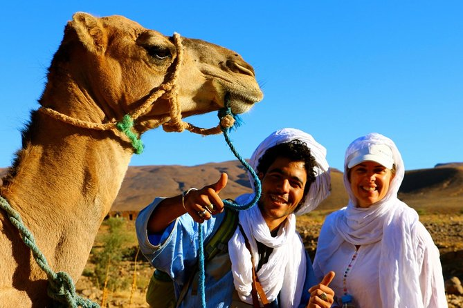 From Marrakech: Private 12 Days Camel Trekking in Southern Morocco Erg Chegaga