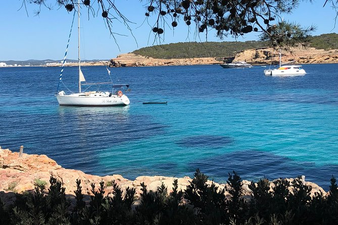Sailing or catamaran excursion Cala Bassa and Cala Conte