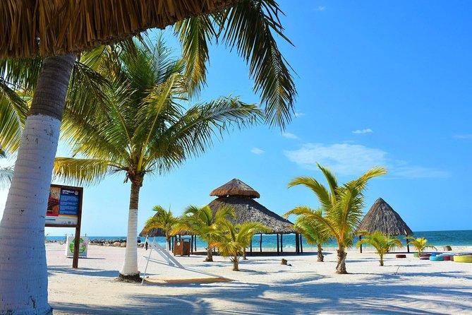 Campeche-Playa Bonita-Campeche Tour