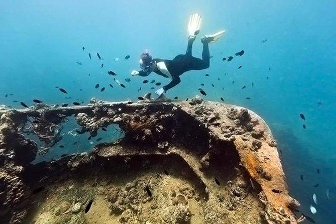Coron Reefs and Wreck Tour