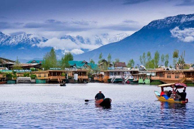 Kashmir Delight